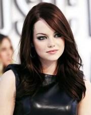 auburn hair dye brands dark