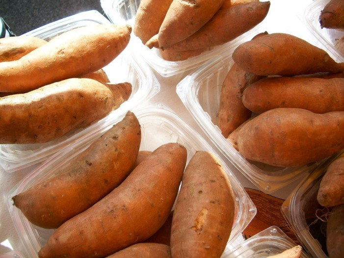 sweet potatoes for Holiday Yam Squares