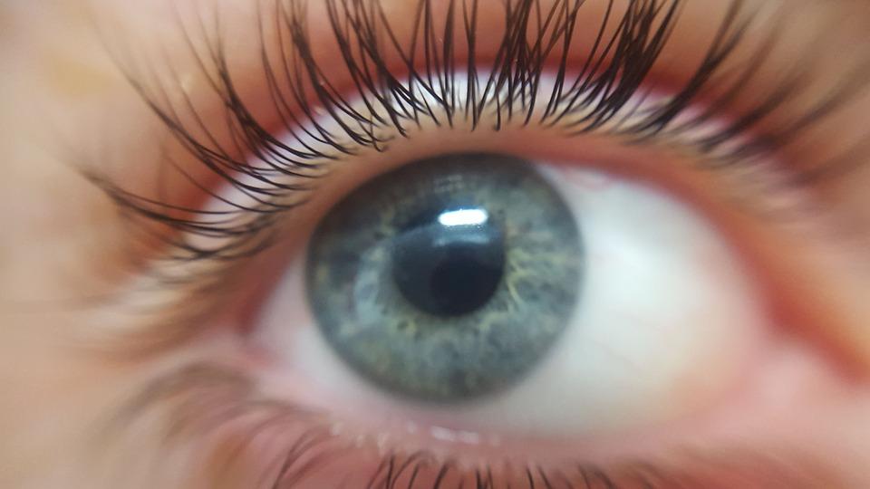 Bright Eye Pixabay Image
