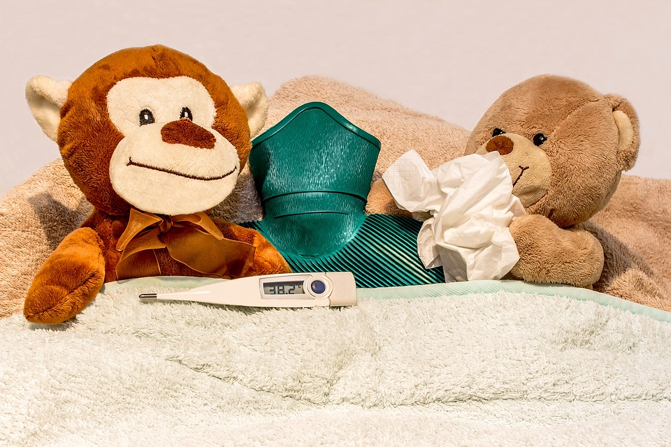Cold Prevention Tips to Kiss Suffering Goodbye Stuffed Animals and Hot Water Bottle