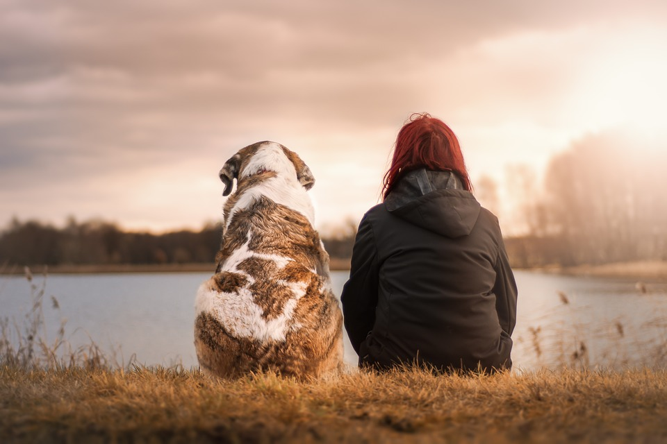 Dog and Woman Pet Owner Sitting Together in Nature Illustrating Value of Pets for Happiness and Health