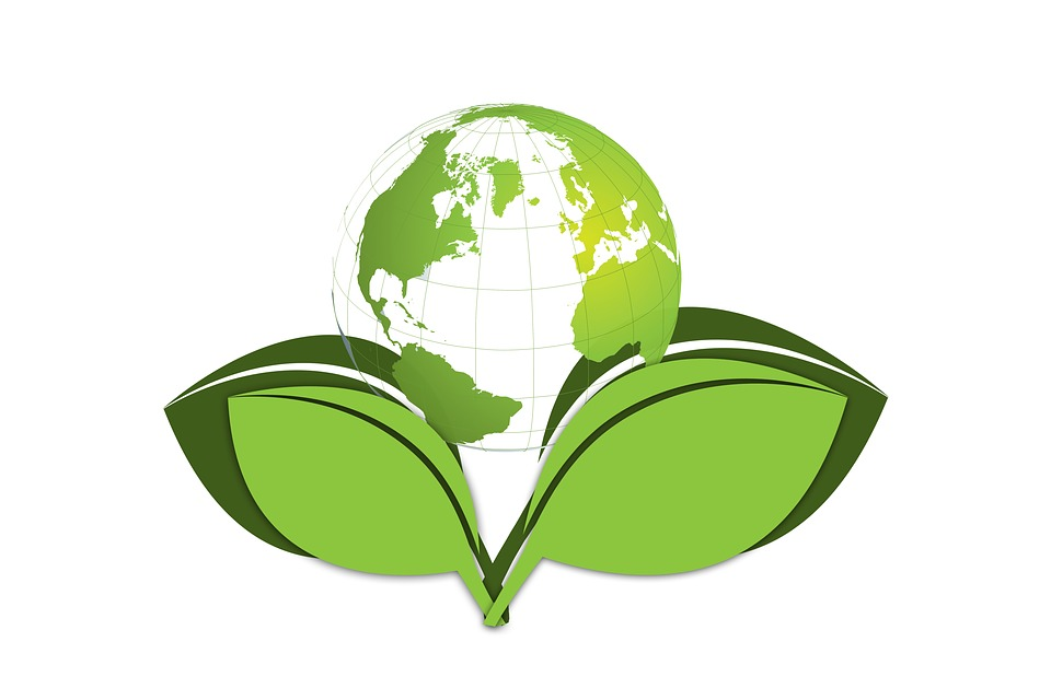Eco Friendly Tips Green Planet Earth
