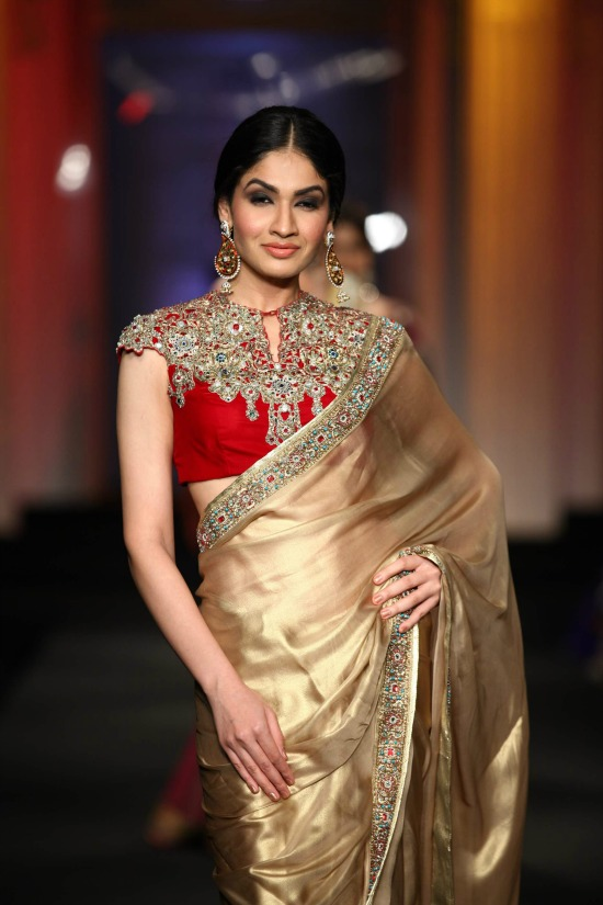 Cap Sleeve Blouse With Soft Gold Tone Saree