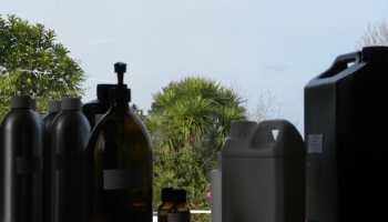 Peppermint Arvensis Essential Oil 1