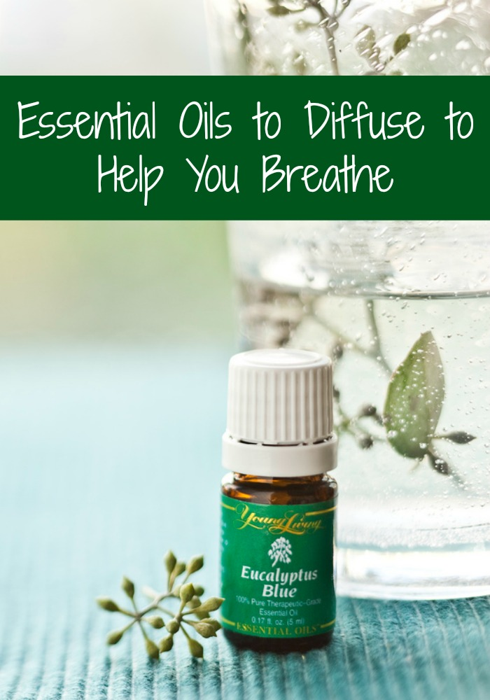 Essential-Oils-to-Diffuse-to-Help-You-Breathe