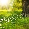 [News] – Sonnenschutz für Haut und Haar: