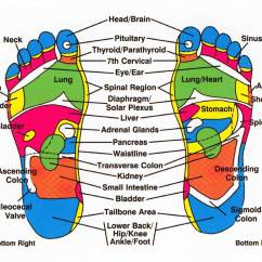 Foot Massage Therapy Diagram Volleyball Court Labeled Reflexology And Your Body How Everything Is Connected