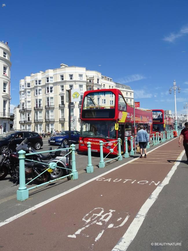 Brighton 31-min
