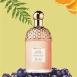 guerlain-orange-soleia