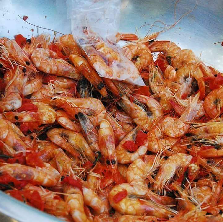 Pepper Shrimp