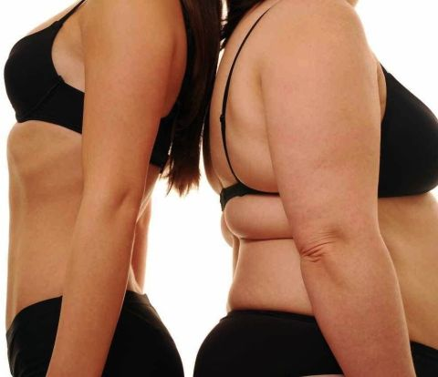 overweight body