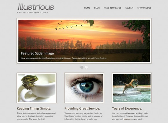 illustrious-theme-wordpress-portfolio