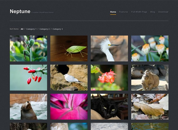 neptune-theme-wordpress-portfolio