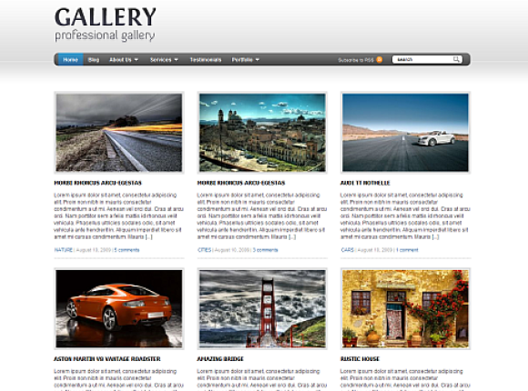 gallery-theme-wordpress-premium