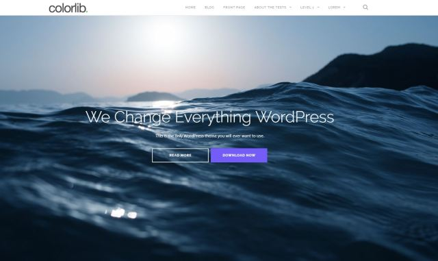 shapely-theme-wordpress-gratuit-une-page