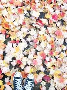 18 autumn leaves shoes