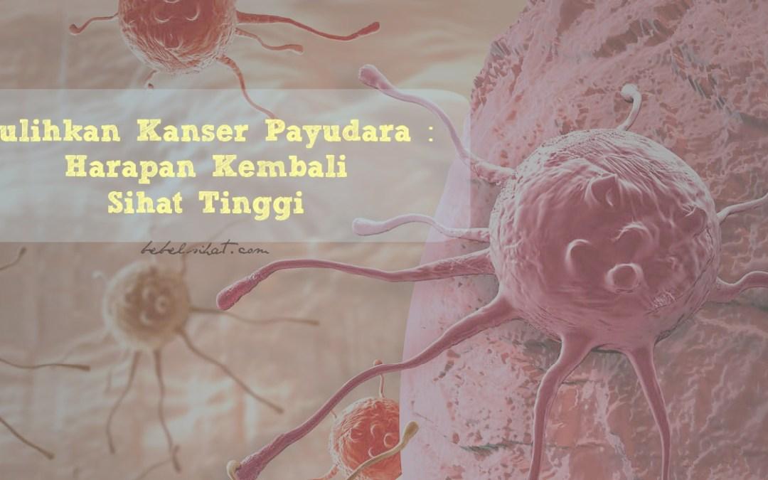 Pulihkan Kanser Payudara : Harapan Kembali Sihat Tinggi