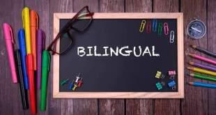 escola bilingue como funciona