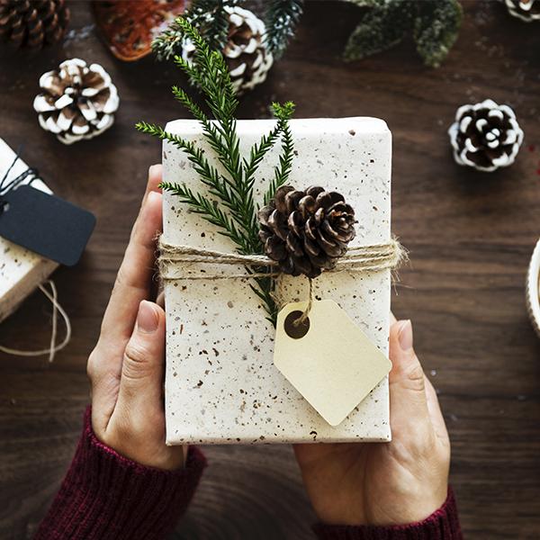 regalo cover
