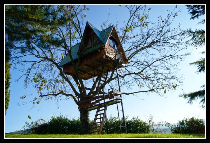 Dormire in una  Casa sull albero: Casa di mimma Campania