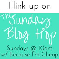The Sunday Blog Hop