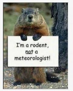 groundhog+day