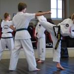 beccles-taekwondo-demo50