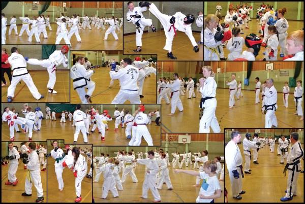 Taekwondo Clubs Seminar