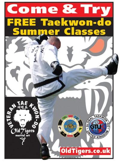 Taekwondo Summer Classes