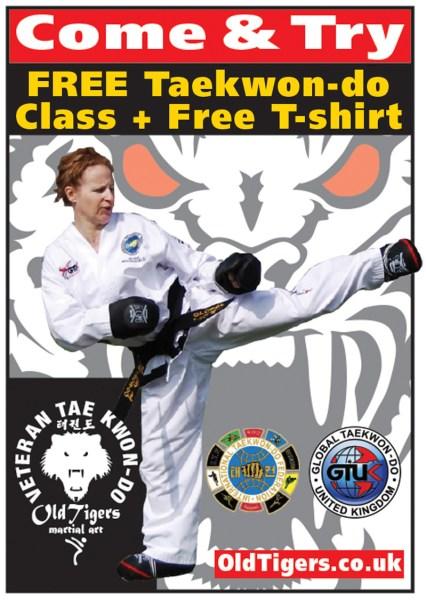 Free Taekwondo Classes