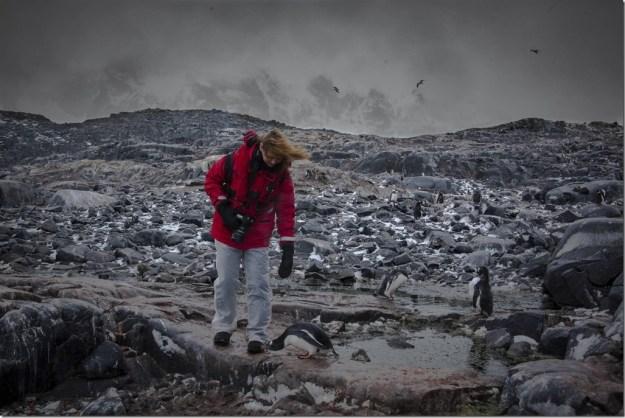 antarctica2015_lockroy-14 1