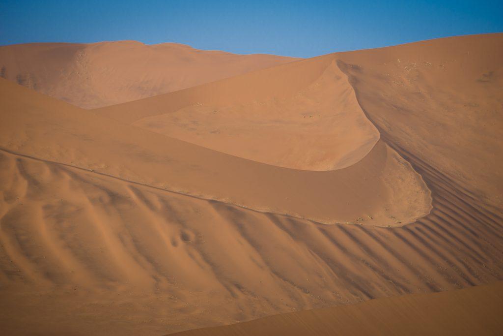 Vom Wind geformt: Dünen-Verlauf