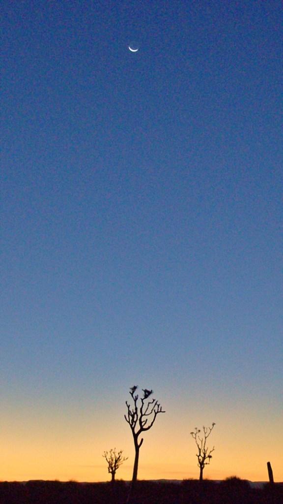 Abendlicher Mond bei Sonnenunte