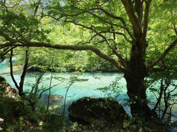 Reines Fluss-Wasser