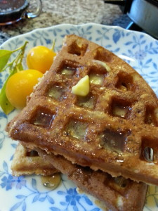 Whole Wheat Waffles made from Beck's Farm-Style Baking Mix