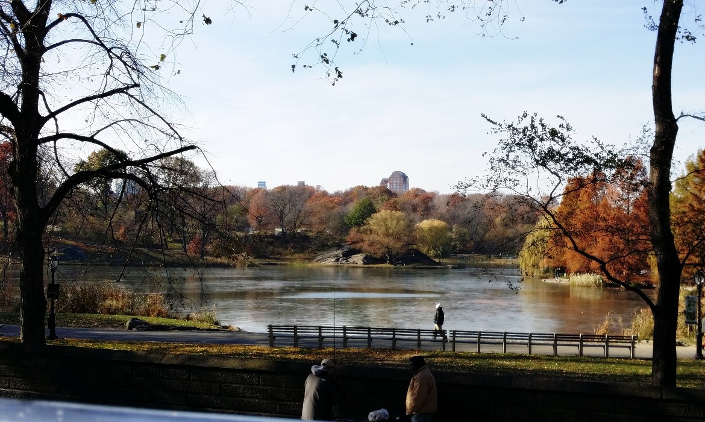 Central Park - New York New York, travel blog by BeckyBecky Blogs