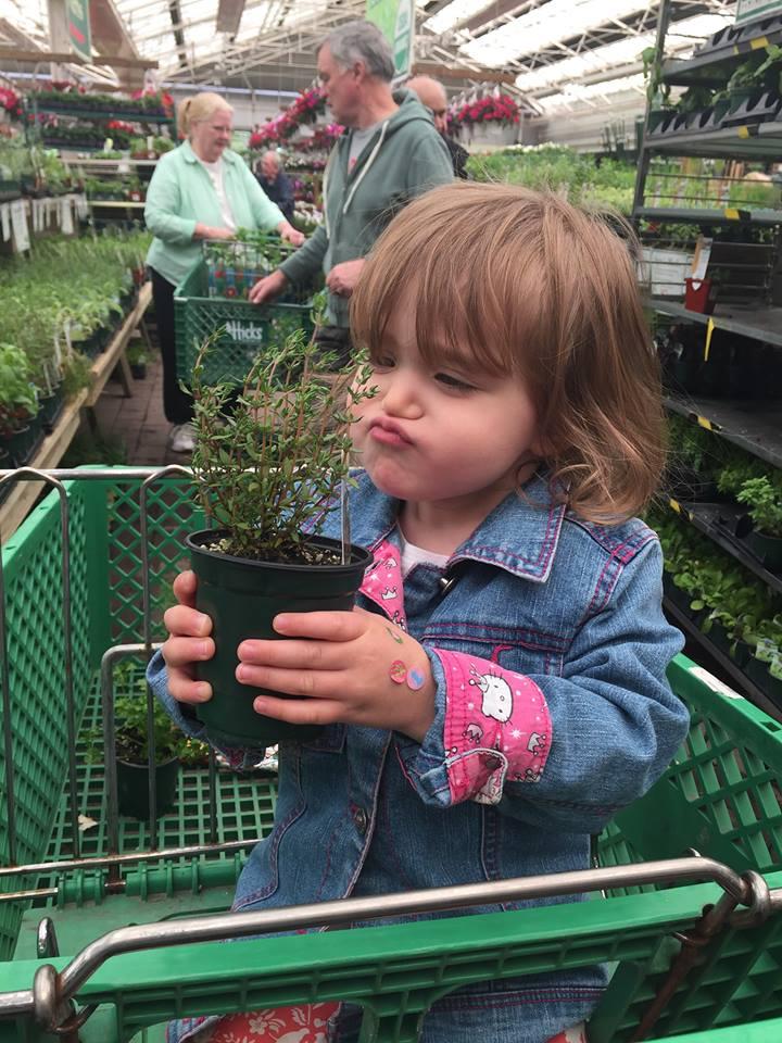 Adventures in Gardening