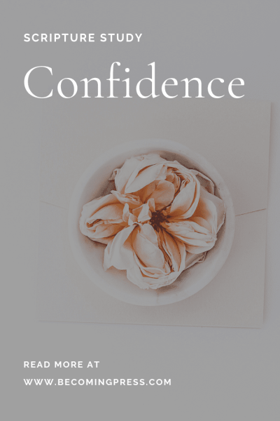 Scripture Study Confidence