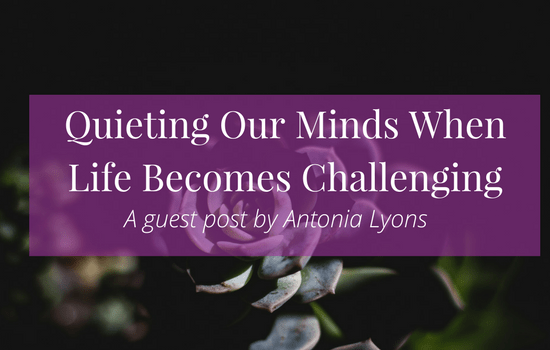 Click the image for suggestions on quieting our minds when life becomes challenging