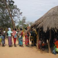 Il Mayo Mwana Project