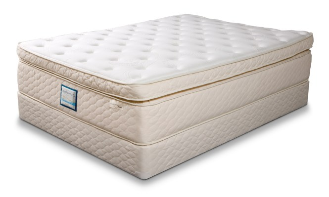 Mattresses Bedkings King Queen Harrison Paradise 5000 Pillowtop Size