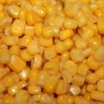 maíz-grano-málaga-lkh bedoya