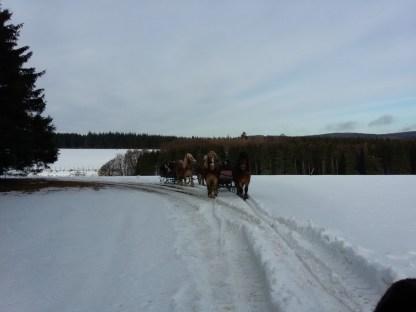 Actie in de sneeuw (13)