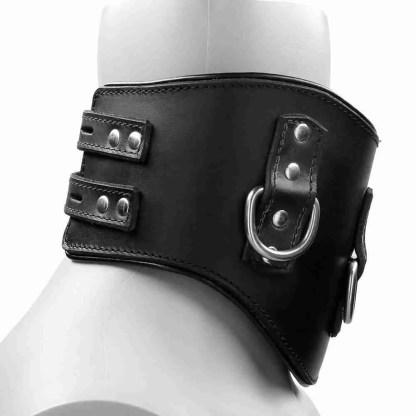 Heavy Duty Black Leather Padded Posture Collar 3