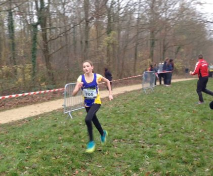 Cross de Chaville 30 nov 2014