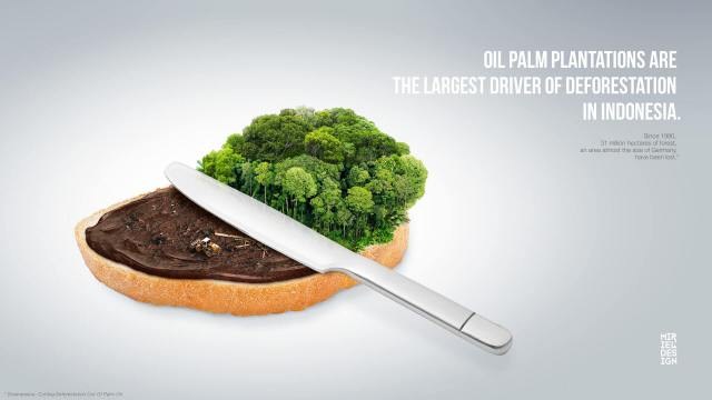 deforestation-palm-oil