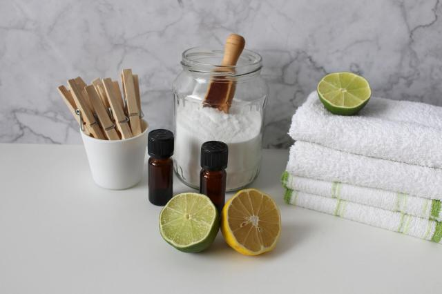 zero-waste-toilet-cleaner