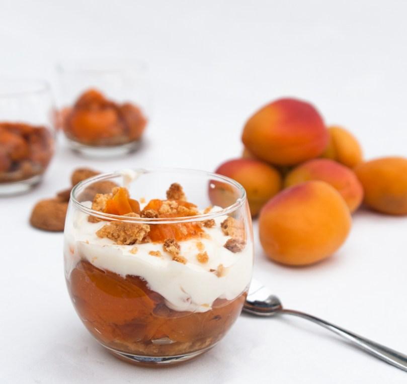 ApricotAmarettiFool_Single