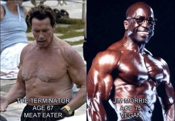 Arnold vs Jim