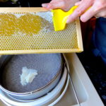 Beehive Yourself - Uncapping a frame of honey 150 x 150 - Pure Local Honey